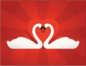 Vector Swans with valentine heart background. Includes editable AI and EPS files.