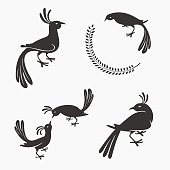 Vector Symbol of Exotic Birds