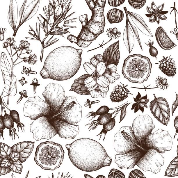tło herbaty wektorowe - liść mięty przyprawa stock illustrations
