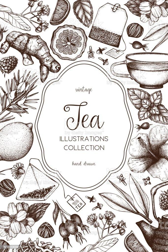 Vector tea design vector art illustration
