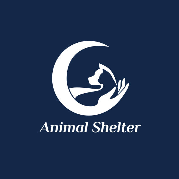 Vector template design. Animal shelter abstract icon Vector template design. Animal shelter abstract icon animal shelter stock illustrations