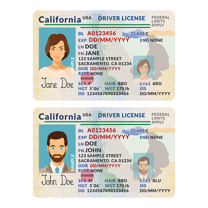 Vector template of sample driver license plastic card for USA California