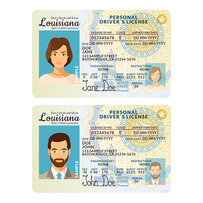 Vector template of toy driver license plastic card for USA Louisiana