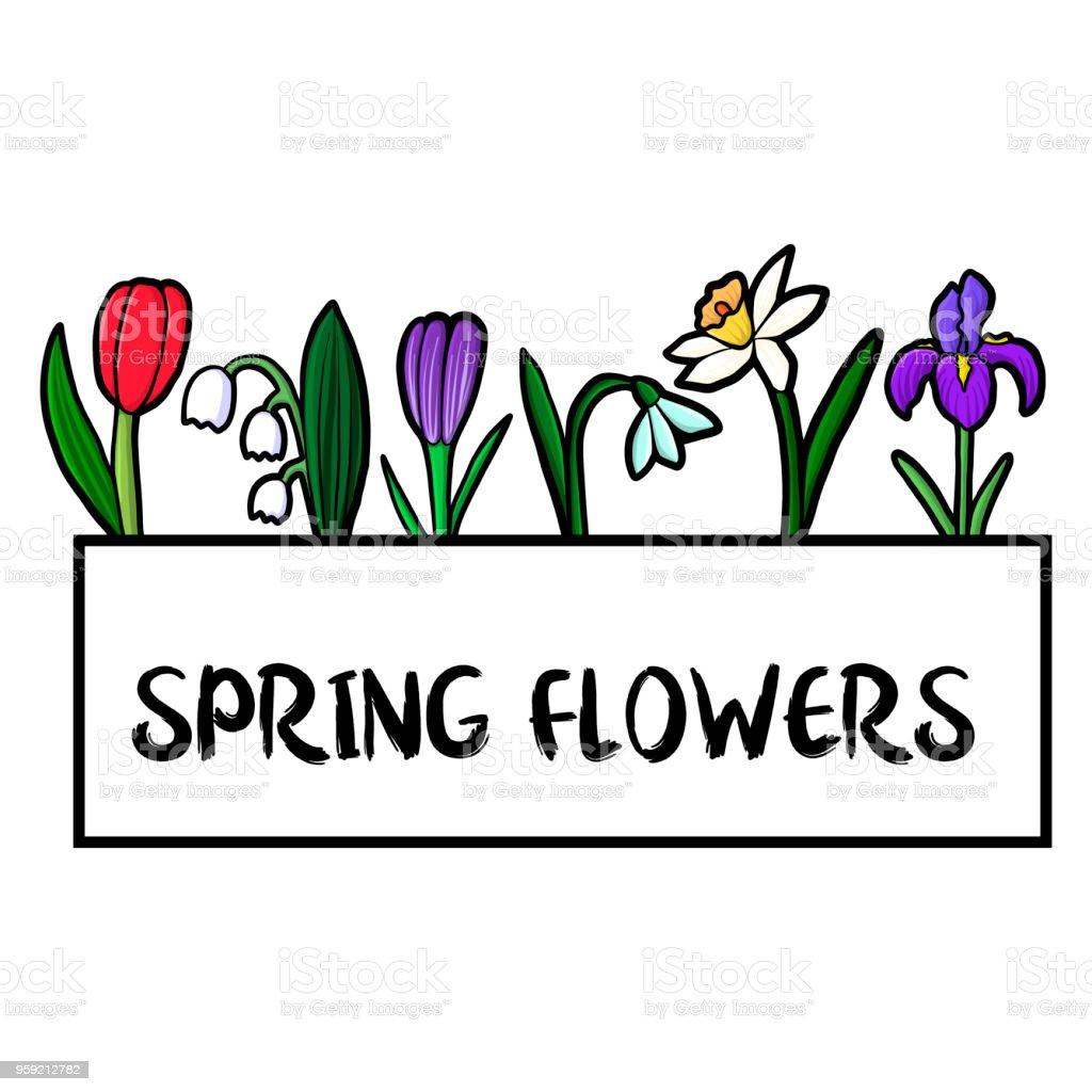 Vektorvorlage Mit Blumen Stock Vektor Art und mehr Bilder von ...