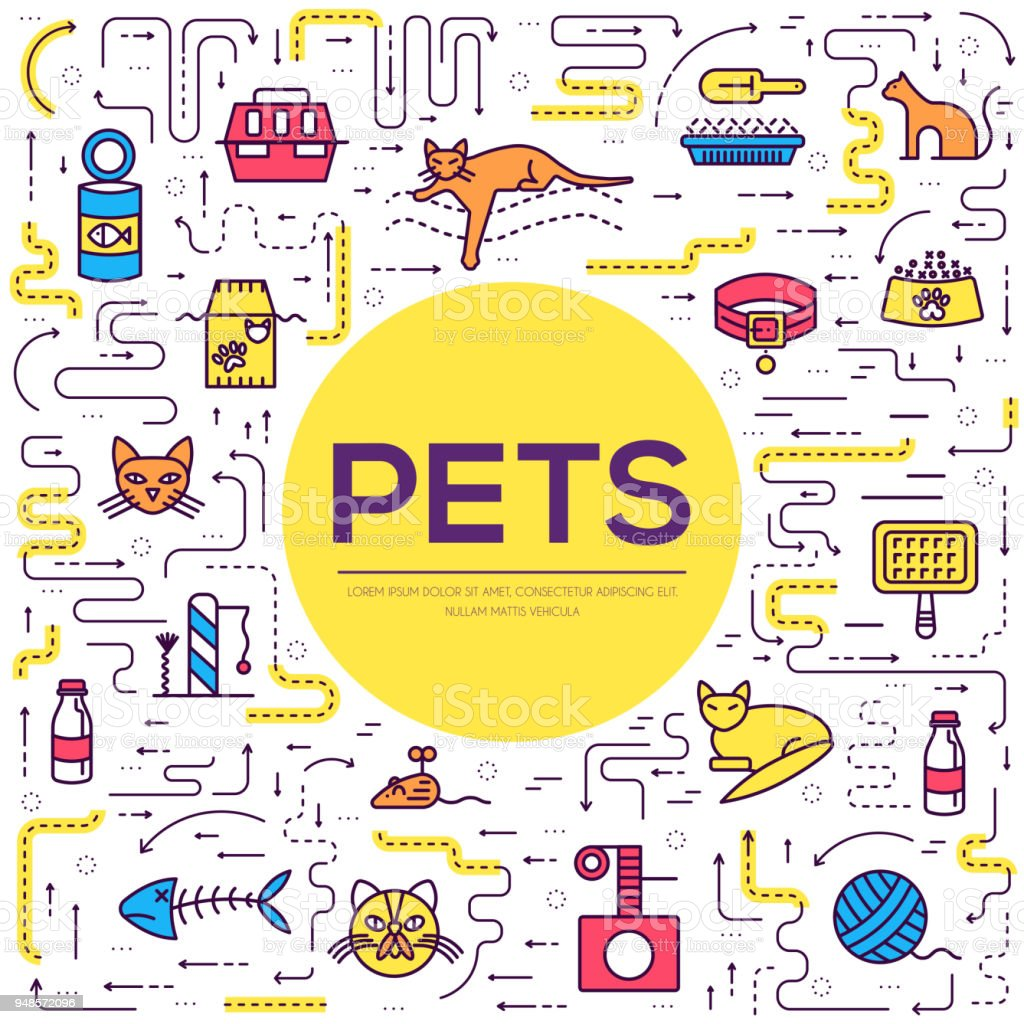 Vector thin line breed cats icons set. Cute outline animal illustrations pet design. Collection different kitten layout flat cover vector art illustration