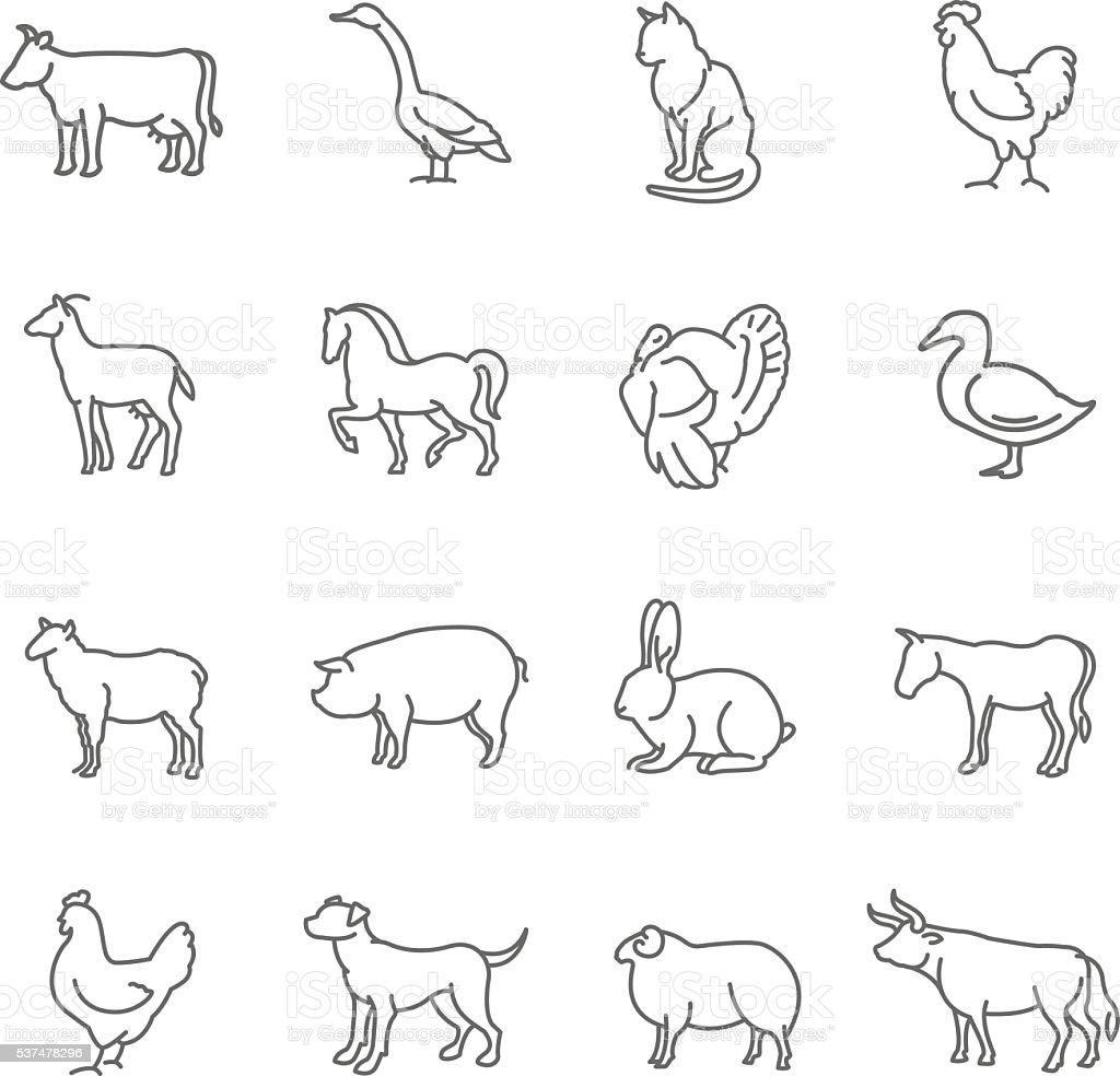 Line Art Farm Animals : 벡터 여윔 꺾은선형 농장 동물은 아이콘 세트 가금류에 대한 스톡 아트 및 기타 이미지