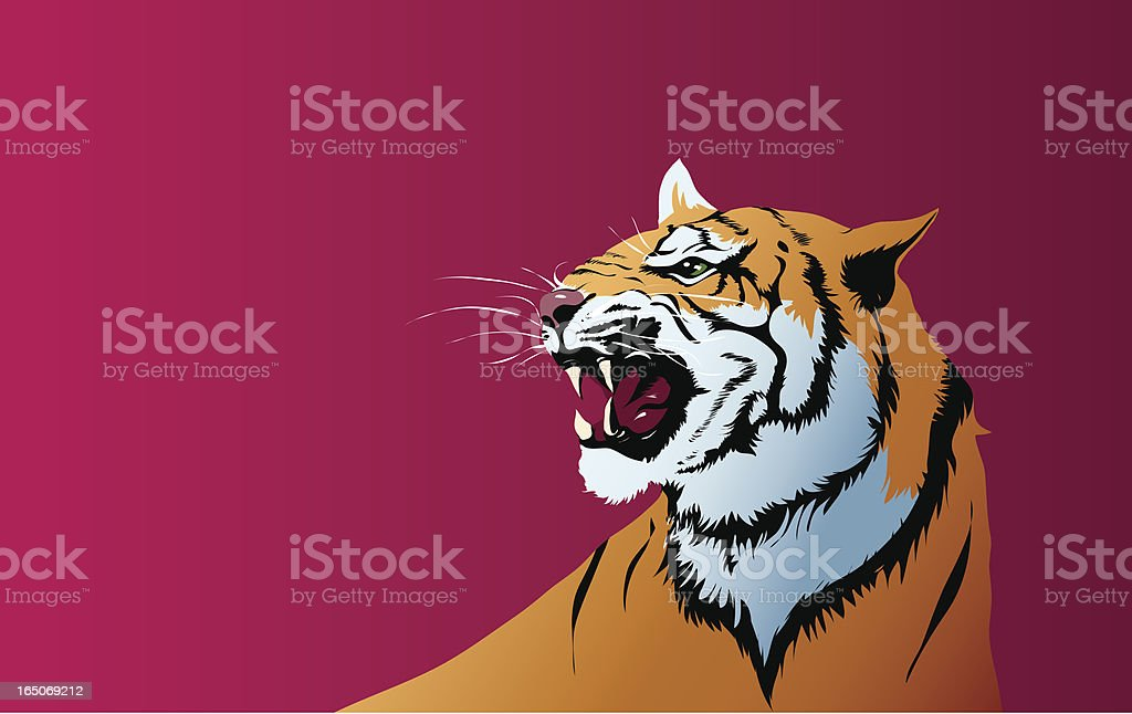 Vector tiger vector art illustration