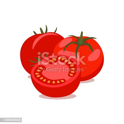 Vector tomato. bunch of whole and cut tomatoes on white background, vector illustration.