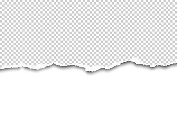 vector torn a half sheet of transparent paper from the bottom with white remaining paper part. template design. - at the edge of stock illustrations
