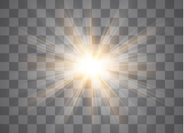 벡터 투명 한 햇빛 특수 렌즈 플레어 빛 효과입니다. - 밝은 빛 stock illustrations