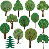 vector tree illustrations  clipart