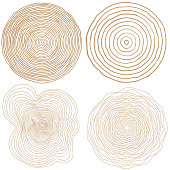 vector tree rings background and saw cut tree trunk Conceptual graphics