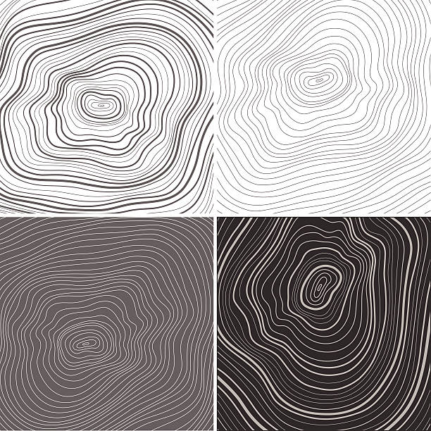 stockillustraties, clipart, cartoons en iconen met vector tree rings background, topographic map background concept - boomstronk