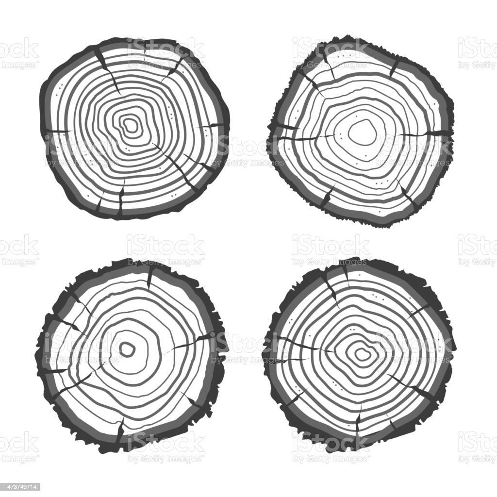 Vector tree rings collection. Flat Design vector art illustration