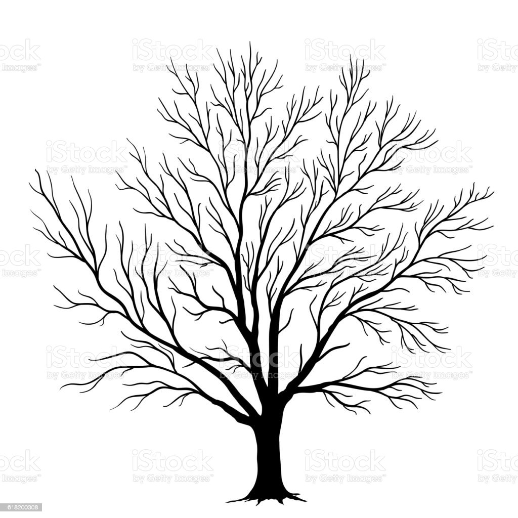Vector tree silhouette isolated on white background vector art illustration