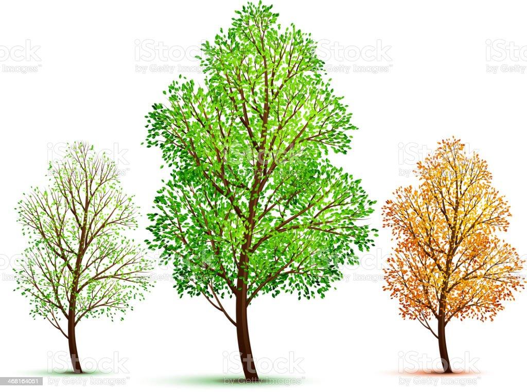 Vector tree vector art illustration