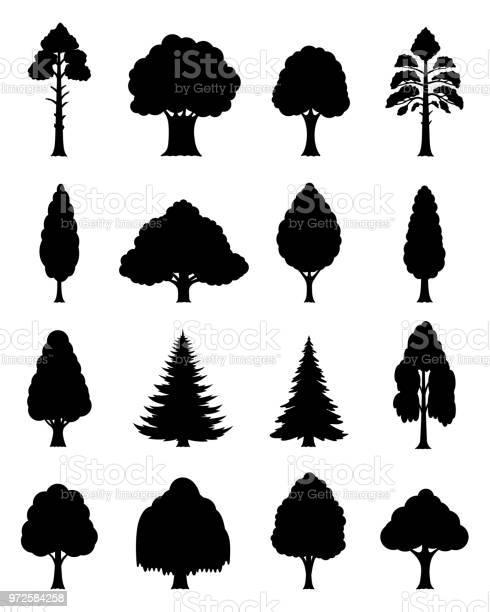Vector trees icons vector id972584258?b=1&k=6&m=972584258&s=612x612&h=uadxevnwa0pmzbvvfys6m8dr8drcjgvmxwus93eyaqm=