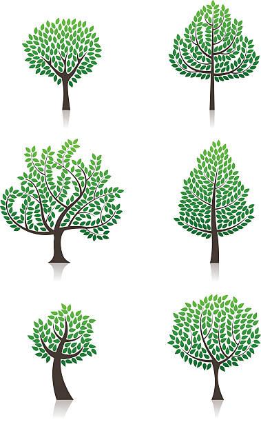 Wektor drzew – artystyczna grafika wektorowa
