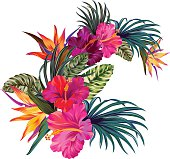 vector bouquet with tropical flowers. Retro Hawaiian style floral arrangement, with beautiful hibiscis, palm, bird of paradise. Amazing vector illustrations, in vintage style. Editable graphic elements.