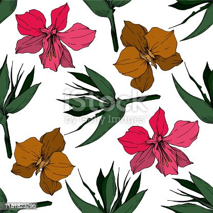 Vector Tropical flowers and leaves isolated. Exotic tropical hawaiian summer. Palm beach tree leaves. Black and white engraved ink art. Seamless background pattern. Fabric wallpaper print texture.