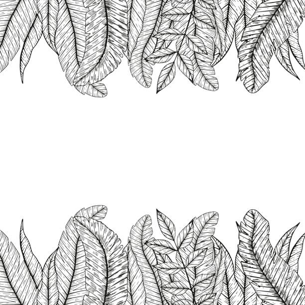 Vector tropical leaf vector art illustration