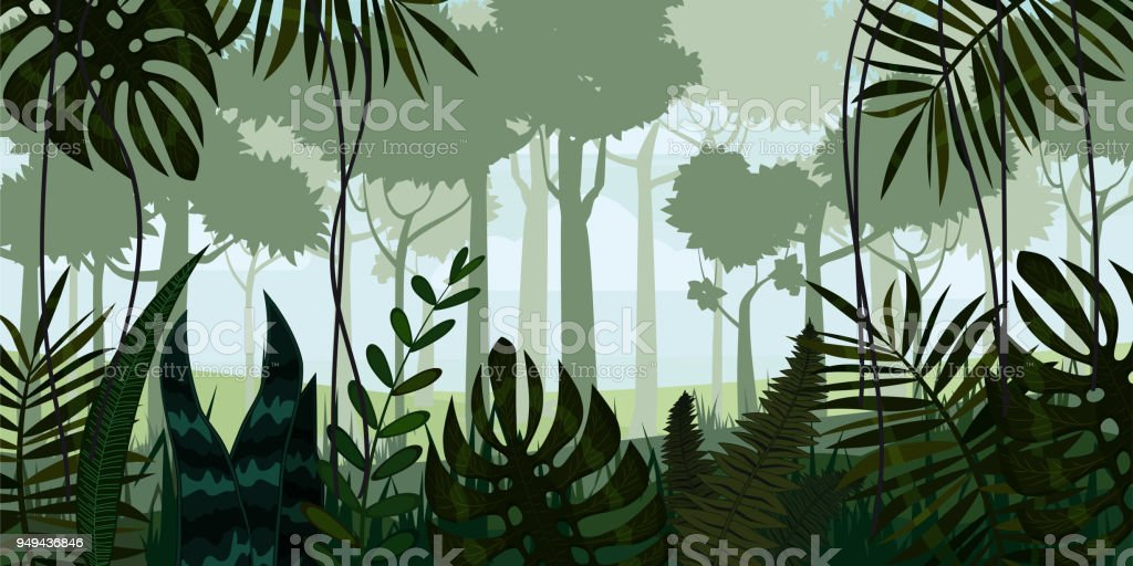 Vector tropical rainforest Jungle landscape background with leaves, fern, isolated, illustrations