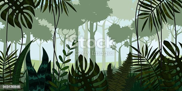 istock Vector tropical rainforest Jungle landscape background with leaves, fern, isolated, illustrations 949436846
