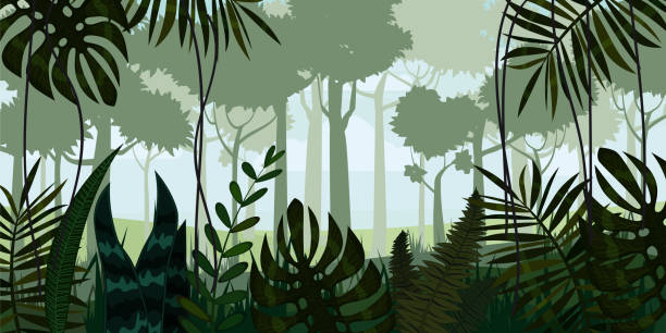 vector tropical rainforest jungle landscape background with leaves, fern, isolated, illustrations - jungle stock illustrations