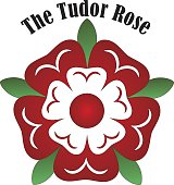 Vector Tudor rose