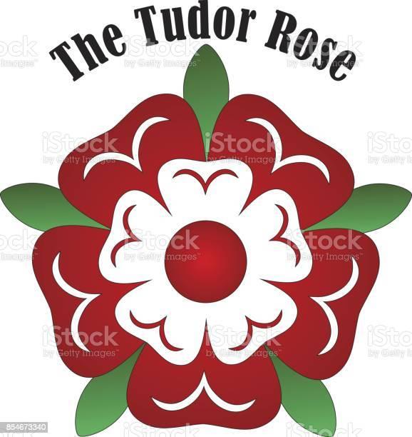 Vector tudor rose vector id854673340?b=1&k=6&m=854673340&s=612x612&h=xkrpdu le1c mvhks5n gtjnwlbthrvthc2hdbb1oj4=