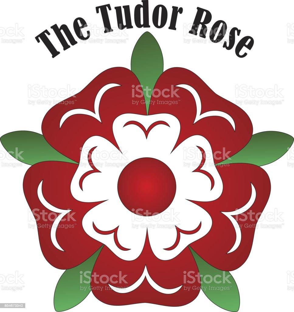 Vector Tudor rose vector art illustration