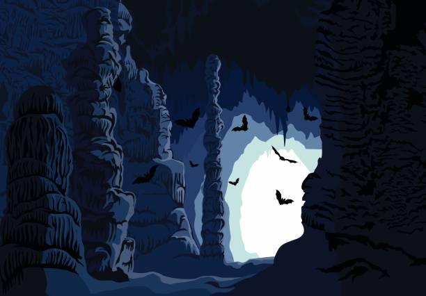bildbanksillustrationer, clip art samt tecknat material och ikoner med vector underjordiska karst grotta med fladdermöss - stalagmit