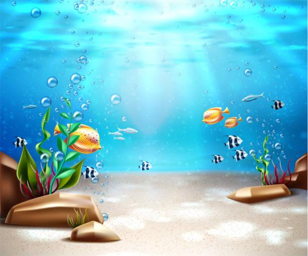 bildbanksillustrationer, clip art samt tecknat material och ikoner med vector undervattens liv havet botten scen bakgrund - i havet