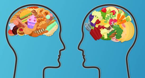 vektor ungesunde fertigkost und gesunde ernährung vergleich. essen gehirn modernes konzept. - hamburger schnellgericht stock-grafiken, -clipart, -cartoons und -symbole