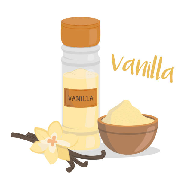 Vector vanilla illustration isolated in cartoon style. Herbs and Species Series vector art illustration