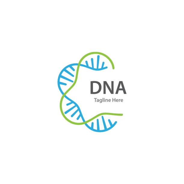 DNA vector DNA vector template genetic research stock illustrations