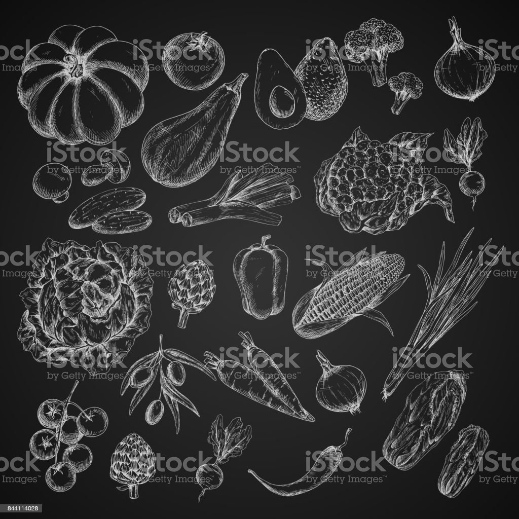 Vector vegetables chalk sketch icons set