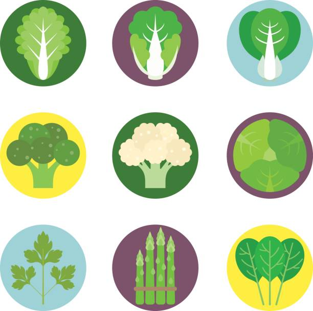 vector vegetables flat icons set 1 - lettuce stock illustrations