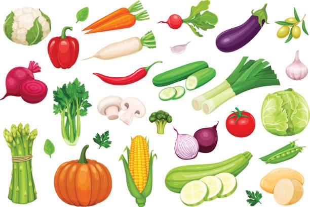 Vector vegetables icons set in cartoon style Vector vegetables icons set in cartoon style. Collection farm product for restaurant menu, market label. radish stock illustrations