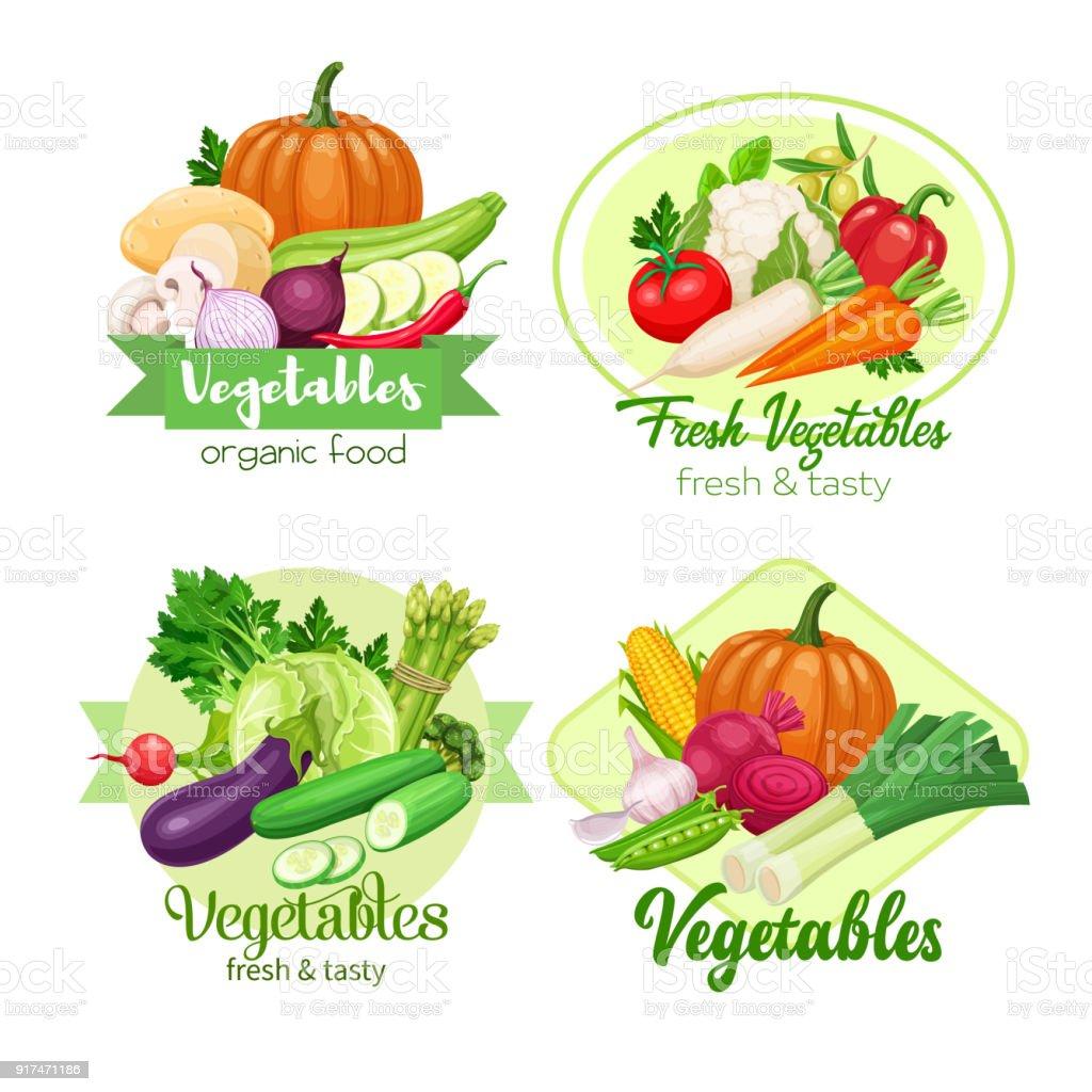 vector vegetables vector art illustration