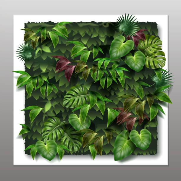 stockillustraties, clipart, cartoons en iconen met vector verticale tuin - klimop