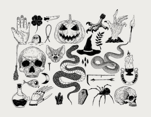 vector vintage hand drawn halloween graphics. pumpkin, skull, witch, snake, candle, bat, spider,poison, spell, grave. - snakes tattoos stock illustrations, clip art, cartoons, & icons