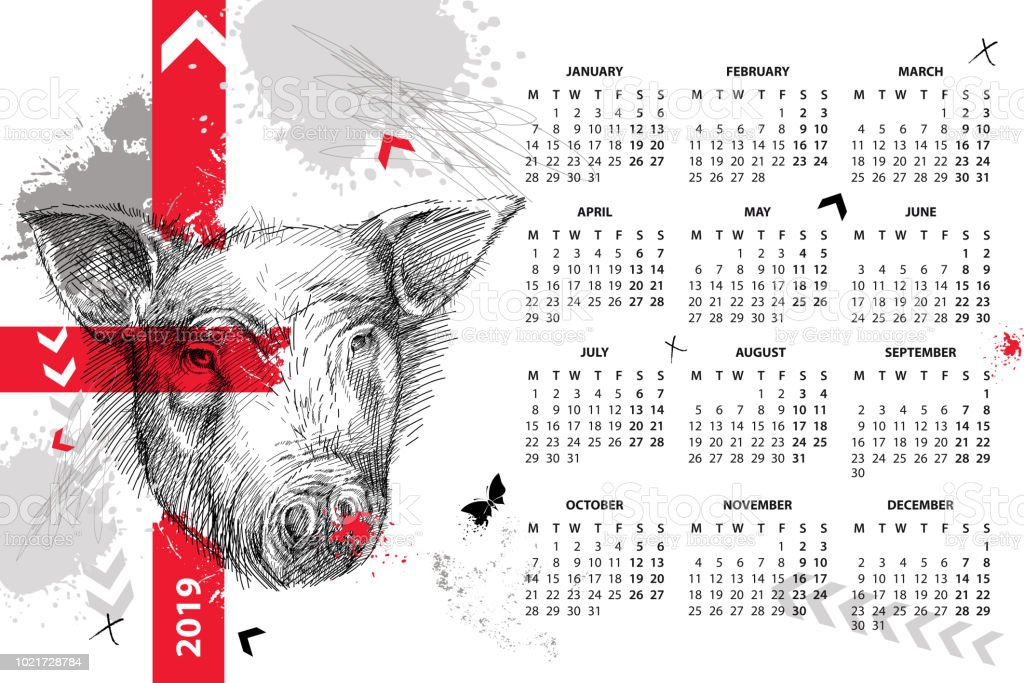 Vector wall calendar for 2019 year in Trash Polka with sketch head of pig in black. Monday start. Symbol of Chinese New Year. vector art illustration