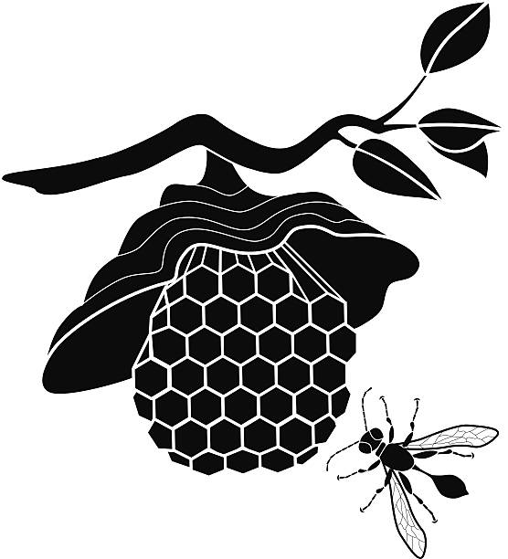 vector wasp's nest and flying wasp vector art illustration