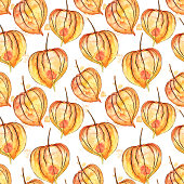 Vector Watercolor and Ink Seamless Pattern of Fall Physalis Winter Cherry Plant