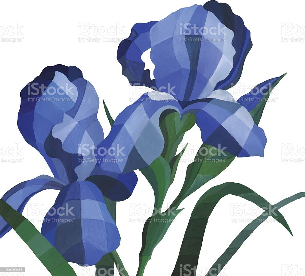 Vector Watercolor Blue Iris Flowers Isolated On White Background