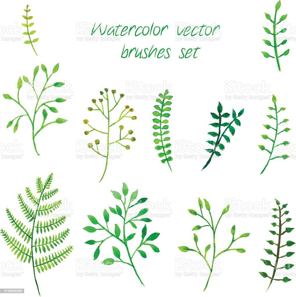 Vector watercolor brushes set. vector art illustration
