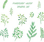 Vector watercolor brushes set.