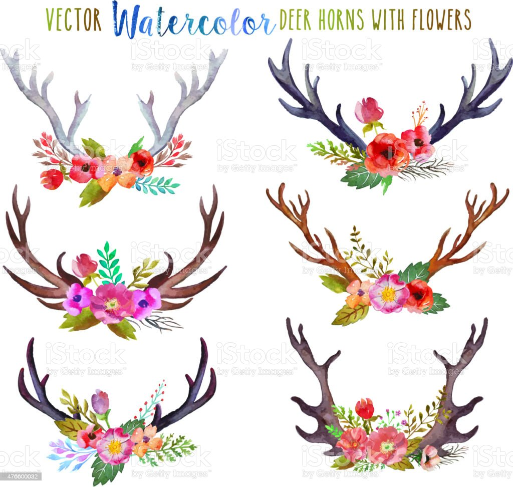 Vector watercolor deer horns vector art illustration