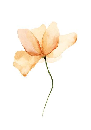 Vector Watercolor Flower